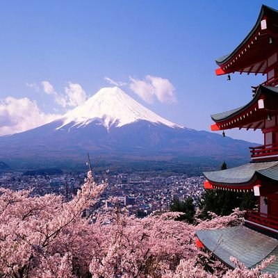 15 Shocking Facts About Japan - The Wise Traveller - Fuji - Cherry Blossom