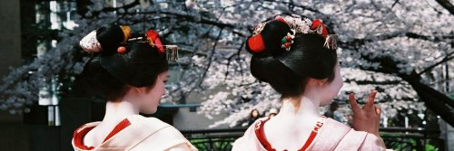 15 Shocking Facts About Japan - The Wise Traveller - Geisha
