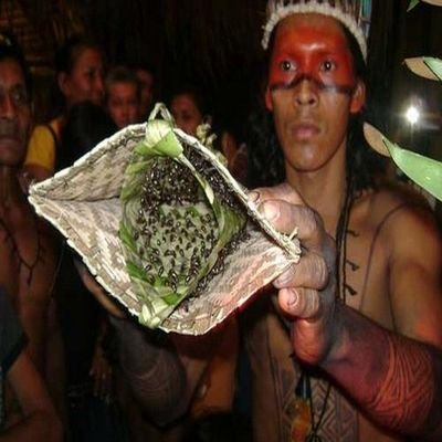 7 Bizarre Local Customs - 7 Local Customs From Around The World That Seem Bizarre - The Wise Traveller - Bullet Ant Ritual