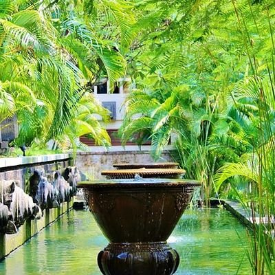 A Wellness Lover's Guide to Ubud - Bali - The Wise Traveller