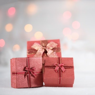 Christmas Gifts for Travellers - The Wise Traveller - Christmas Gifts