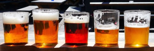 East Coast vs West Coast Craft Brews - the Debate Continues - The Wise Traveller
