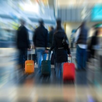 Fare Changes & Baggage Fees 2015 - The Wise Traveller - People with bags in airport