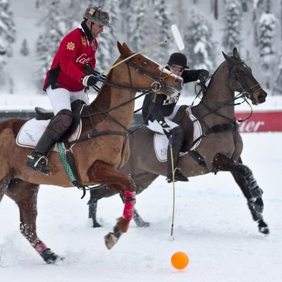 From Snow Polo and Skiing to Toboggan Runs - Winter Sports in St. Moritz - Switzerland - The Wise Traveller