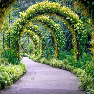 Go for the Green - Gardens That Are Open Around the World - The Wise Traveller - Singapore Botanic Gardens Golden Arches