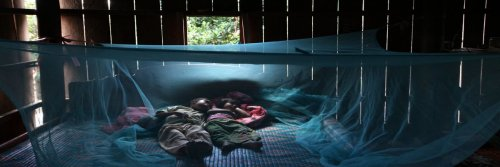 Malaria Pills, Yes Or No? Malaria Medication - The Wise Traveller