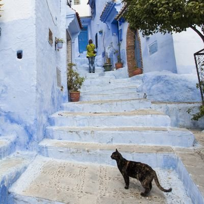 Morocco For The Solo Female - 5 Travel Tips For The Single Woman In Morocco - The Wise Traveller - Chefchaouen