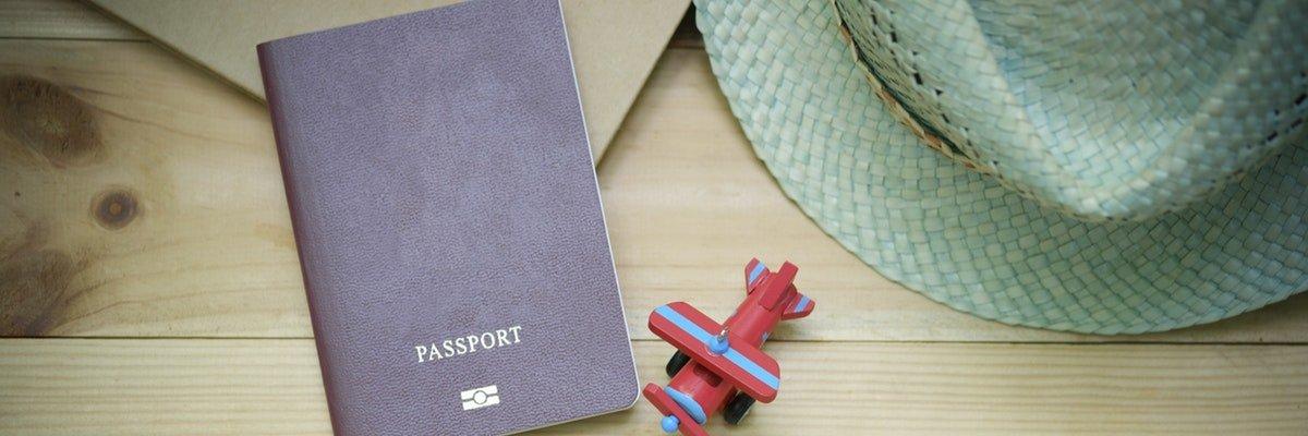 organising for international travel