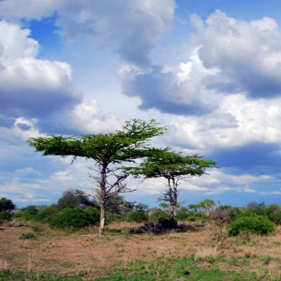 Silent and Beautiful Destinations in the World - The Wise Traveller - Southern Tanzania