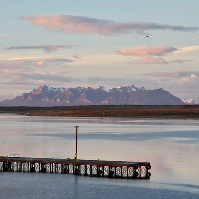 Sloths, Swans and Ice Cream in Wine– Puerto Natales - Chile - The Wise Traveller
