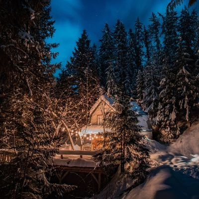 Things to do during a cabin stay – A fun packed holiday - The Wise Traveller