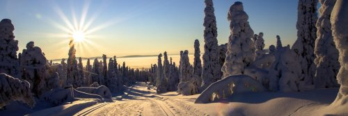 Top 5 Places in Lapland to Visit this Winter
