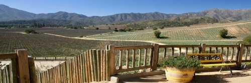 Villard Family Winery - Casablanca - Chile - The Wise Traveller