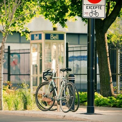 3 Different Ways to Sightsee Montreal - The Wise Traveller - Bike