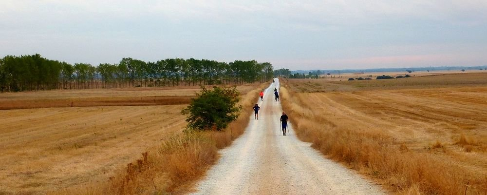 A Great Pilgrimage Walk - El Camino de Santiago - Spain - The Wise Traveller - Path