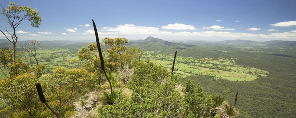 Beyond Byron Bay - Secrets of New South Wales' Northern Rivers - The Wise Traveller - Border Ranges National Park