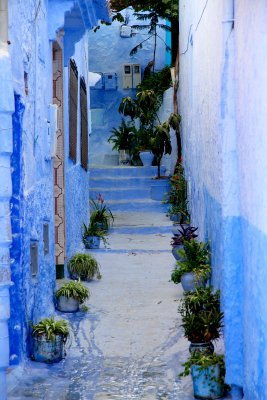 Misadventures in Morocco - The Wise Traveller