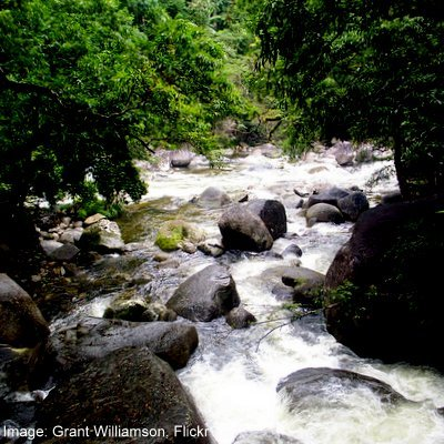 Chasing Ulysses - The Daintree—Cape Tribulation - Far North Queensland - The Wise Traveller - Mossman River