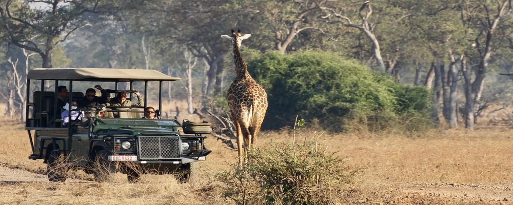 Hotel Review - Mfuwe Lodge - South Luangwa National Park - Zambia - The Wise Traveller - Jeep