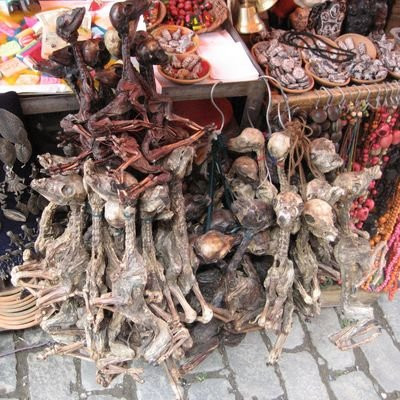 La Paz - The city in the sky - The Wise Traveller - Witches Market