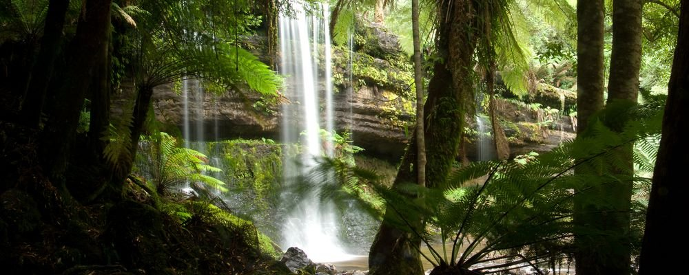Tasmania's Best Natural Wonders - The Wise Traveller - Russell Falls