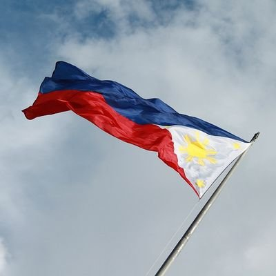 The Philippines National Day (June 12) - The Wise Traveller - Flag.jpg