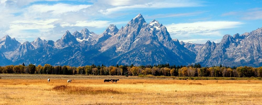 Top Ten National Parks in the U.S.A. - The Wise Traveller - Grand Teton