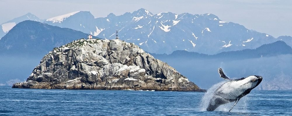 Top Ten National Parks in the U.S.A. - The Wise Traveller - Kenai Fjords